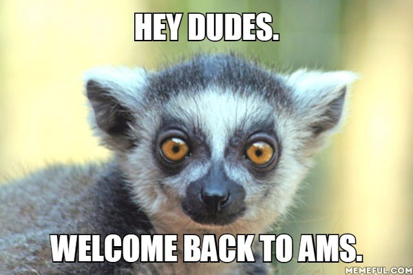 Hey dudes. Welcome back to AMS.